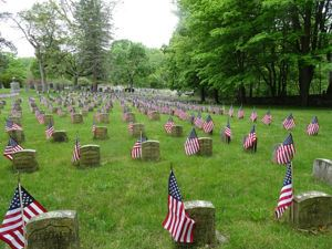 Flags at Forest Dale Cemetery